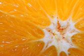 Orange close up — Stock Photo