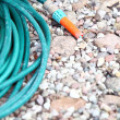 Stock Photo: Garden water hose
