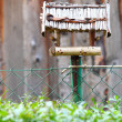 Handmade bird feeder outdoor nature - Stockfoto