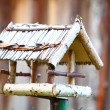 Handmade bird feeder outdoor nature - Foto de Stock