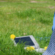 Royalty-Free Stock Photo: Businessman necktie and a laptop outside in a meadow