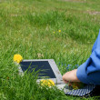 Businessman necktie and a laptop outside in a meadow — Stock Photo