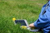 ビジネスマンのネクタイと牧草地の外のラップトップ — ストック写真