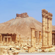 Ancient Palmyra, Syria — Stock Photo #18186805