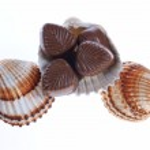 Chocolate pralines and shells — Stock Photo #18358373