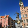 Neptun sculpture in Gdansk - Fountain — Stock Photo #18436993
