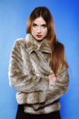 Portrait of young woman in fur blue background — Stock Photo