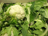 Fresh cauliflowers on the market stand — Stock Photo