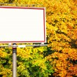Blank white billboard at the park - Stock Photo