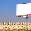 Blank white billboard breakwater and sky - Stock Photo