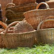 Stock Photo: Brown baskets in green grass