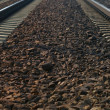 Rail Road Tracks - electrical — Stok Fotoğraf #21646731