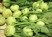 Green radish in supermarket — Stock Photo