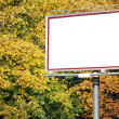 White billboard at the park - Stock Photo