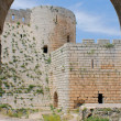 Krak des Chevaliers, crusaders fortress, Syria — Stock Photo #22197643