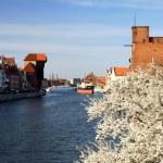 Gdansk, Danzig, Poland, famous wooden crane — Stock Photo