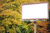 White billboard at the park — Stock Photo