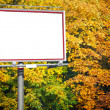 Blank white billboard at park — Stock Photo #22243613
