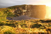 Cliffs of Moher at sunset in Co. Clare, Ireland — Stock Photo