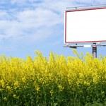 Blank white billboard in a rapeseed field — Stock Photo #22772586