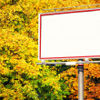 Blank white billboard at park — Stock Photo #22813802