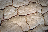 Dry desert cracked ground background — Stock Photo