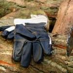 Цепная пила - защитные перчатки — Стоковое фото #23147360