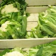 Fresh cauliflowers on the market stand - Stock Photo