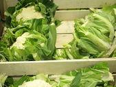Fresh cauliflowers on the market stand — Stock Photo