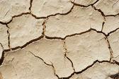 Drougtt land - desert — Stock Photo
