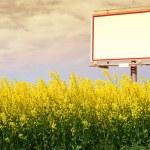 Blank white billboard in a rapeseed field — Stock Photo #23488683