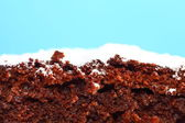 Close up chocolate cake with icing sugar — Stock Photo