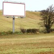 Blank white billboard in field — Foto de stock #24512337