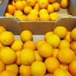 Citrus orange fruits in box supermarket - Zdjęcie stockowe