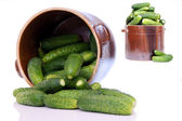 Pot of cucumbers — Stock Photo
