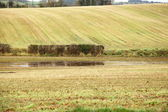 Autumnal landscape fields in Co.Cork, Ireland. — Stock Photo