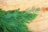 Bunch fresh dill herb on wooden table — Stock Photo
