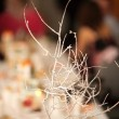 winter tree branches on event table decor detail — Stock Photo