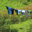 Clothes hanging to dry on laundry line — Stock Photo #30242347