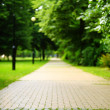 The stone path in the park. — Stock Photo #30282301