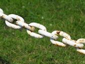 Steel metal chain links segment green background — Stock Photo
