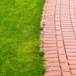 Stone pathway in garden, brick sidewalk — Stock Photo