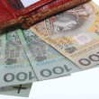 Stock Photo: Economy and finance. Wallet with polish banknote isolated