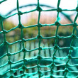 Knot rope netting green safety net blurred background — Stock Photo #32772761