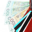 Stock Photo: Economy finance. Wallet with polish banknotes cards isolated
