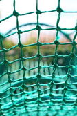 Knot rope netting green safety net blurred background — Stock Photo