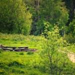 Pathway in green forest Poland Bieszczady — Stock Photo