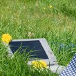 Bussinesman necktie and a laptop outside in a meadow — Stock Photo