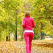 Woman running in autumn forest. Female runner training. — Stock Photo #33733995