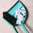 Green sweeping brush dustpan with garbage, housework — Stock Photo